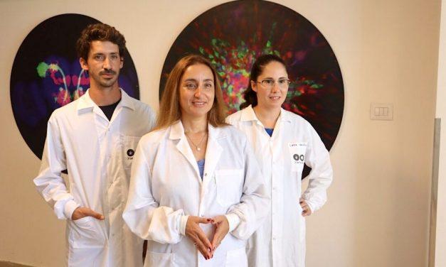 2021-08-26: Israëlische 'Science doorbraak' in  de strijd tegen gevaarlijkste vorm van hersenkanker – Isr.'scientific breakthrough' in the battle against most dangerous type of brain cancer